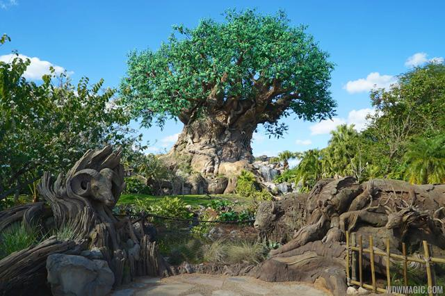 Disneys_Animal_Kingdom_Tree_of_Life_view_