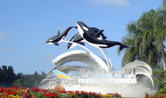First Responders Get Free Visit To SeaWorld Orlando!