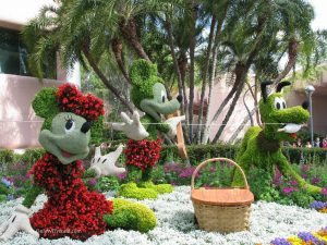 Epcot Flower Garden Festival0021