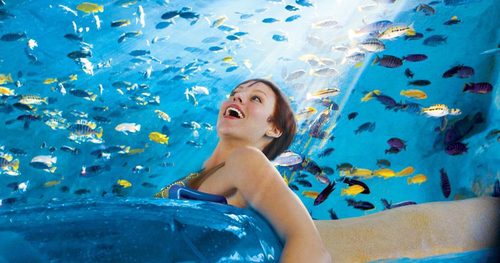 Fish_Grotto