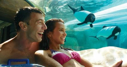 Aquatica-seaworlds-waterpark-9760