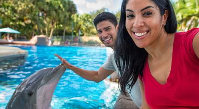 SWO Dolphin Encounter